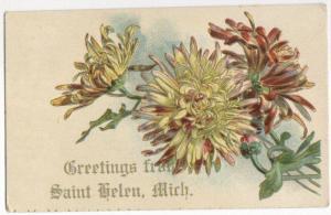 Greetings From St Helena MI -embossed-