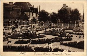 CPA DIVES-sur-MER - Scene (383631)