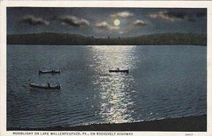 Moonlight on Lake Wallenpaupack,  Pennsylvania,  PU_1938