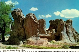 New Mexico City Of Rocks State Park Near Deming