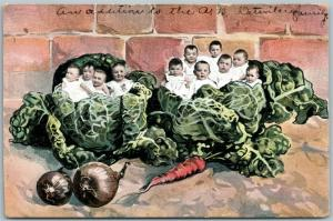 MULTIPLE BABIES in CABBAGE w/ VEGETABLES ANTIQUE POSTCARD