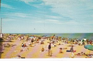 Delaware Greetings From Rehoboth Beach Sunbathers