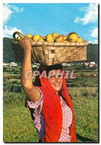 Modern Postcard Portugal Merchant Fruit