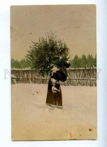 223567 NEW YEAR Santa Claus w/ Christmas tree RPPC PAVLOVSK