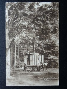 Cheshire GYPSY CARAVAN in DELAMERE FORSET The Fringe of the Forest Old Postcard