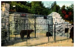 Wisconsin Milwaukee , Washington park Zoo , Bear Cage