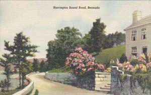 Bermuda Harrington Sound Road