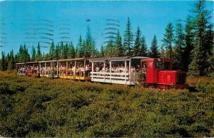 Tahquamenon Falls Michigan~Soo Junction~Hunter's Mill~Newberry Toonerville Train