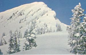 Fidelity Mountain, Winter Scene, GLACIER NATIONAL PARK, British Columbia, Can...