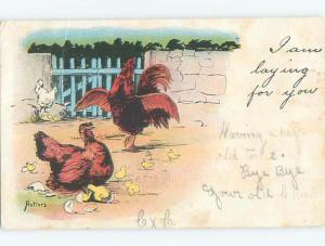 Pre-1907 easter signed CHICKS WITH MOTHER HEN CHICKEN PLUS ROOSTER k9205
