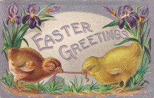 EASTER, PU-1909; Greetings, Irises, Chicks tugging on worm