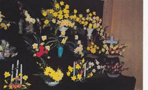 Annual Bradner Flower Show, Bradner Community Hall, British Columbia, Canada,...