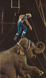 GUNTHER GEBEL-WILLIAMS on Elephant, Red Company of the Greatest Show on Earth...