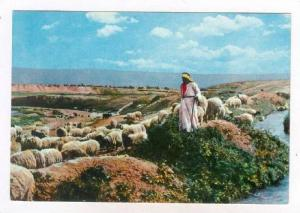 The Good shepherd, Jordan, PU-1961