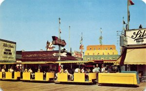 LPN92 Wildwoods by the Sea New Jersey Postcard The Sightseer Amusement Park