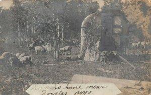 LP79 Douglas Wyoming  RPPC Postcard Shepherds Home Rare  Early 1905-08 Sheep