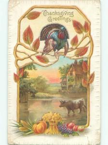 Divided-Back THANKSGIVING SCENE Great Postcard AA0572