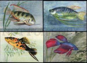 152468 ZOO aquarium fish by Stylo COMPLETE Set 9 old PCs