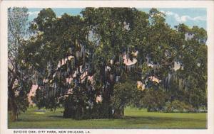 Louisiana New Orleans Suicide Oak In City Park Curteich