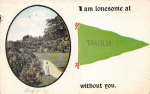 Traer Iowa~Lonesome Victorian Lady by Bush in Park~1917 Pennant Postcard