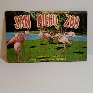 Vintage Postcard San Diego Zoo Balboa Park California Tigers elephant gorilla