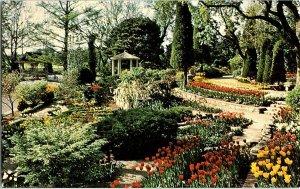 Bartlett Arboretum Belle Plaine Kansas Vintage Postcard Standard View Card