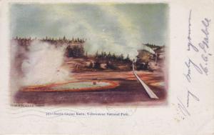 Norris Geyser Basin Yellowstone National Park Vintage Postcard E7