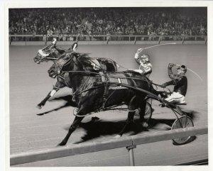 MEADOWLANDS Harness Horse Race , ARGYEL LADDIE winner, 1979