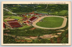Cumberland Maryland~Fairgrounds & Racetrack Grandstands~Airplane View~1940s Curl