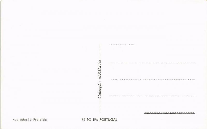 CPA Leiria- O Castelo, PORTUGAL (760825)