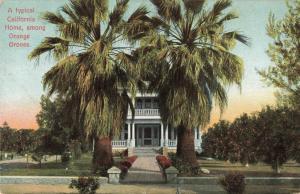 Postcard Home Among Orange Groves California