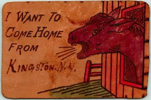 1900s KINGSTON, New York LEATHER Comic Greetings Postcard I WANT TO COME HOME