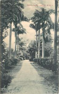 1912 Postmark en Royal Palmas. Jamaica B. W I. División Dorso Tarjeta Postal