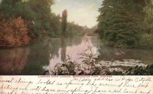 Chicago, IL, Looking over Lagoon, Washington Park, 1912 Vintage Postcard g8340