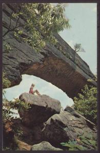 Natural Bridge,State Park,KY Postcard