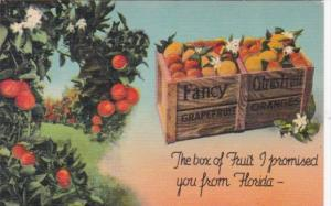 The Box Of Fruit I Promised You From Florida