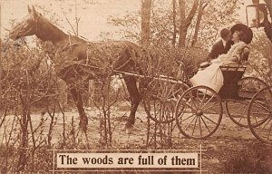 Horse Drawn Woods are full of them Postal Used Unknown
