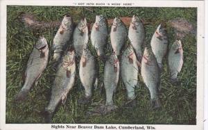 Fishing Day's Catch Sights Near Beaver Dam Lake Cumberland Wisconsin 1932