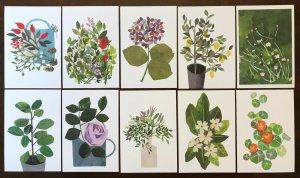 Lot of 10 Beautiful Flower Floral Art Postcards by Artist Clover Robin