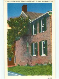 Winchester VA W-25 Brick Stone House Home Tree Braddock Street  Postcard # 5686