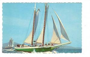 Windjammers off the Main Coast, Camden, Maine,  00-10s