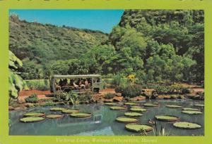 WAIMEA FALLS PARK , Hawaii , 1950-70s ; Victoria Lilies