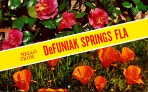 Florida Hello From DeFuniak Springs 1963