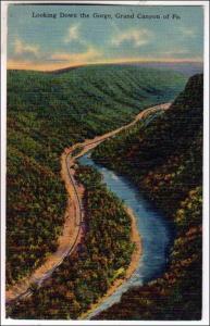 Gorge, Grand Canyon of PA