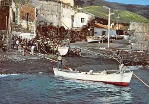 Portugal Acores Vila Franca do Campo Regresso de Barcos de Pesca Fishing Boats