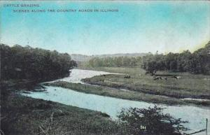 Illinois Cattle Grazing Scenes Along The Country Roads In Illinois 1913