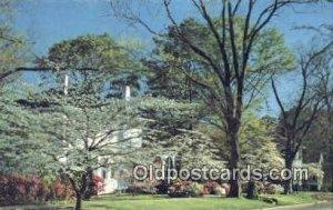 Springtime - Opelika, Alabama AL