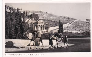 RP Arab men & camels passing Gethsemane & Valiey of Josaphat, Israel, 40-50s