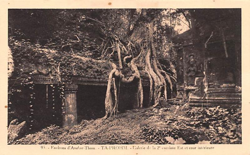 Angkor Cambodia, Cambodge Ta Prohm, Envirosn Angkor Ta Prohm, Envirosn