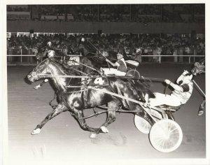 Harness Horse Race , ARMBRO TORNADO wins 1977